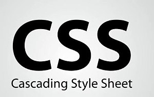 HOJAS DE ESTILOS CSS