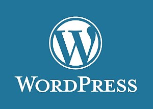 WORDPRESS INICIAL