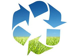 Real decreto ley 17/2012, de 4 de mayo, medidas urgentes en materia de medio ambiente